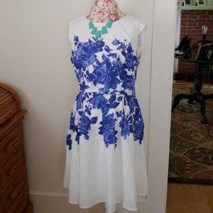 Isaac Mizrahi  Live Dress